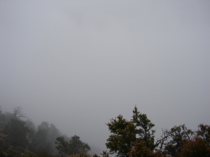 The Grand Canyon, no really it is there somewhere!